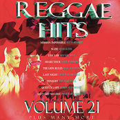 Beres Hammond: Reggae Hits Volume 21