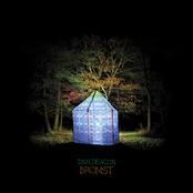 Dan Deacon: Bromst