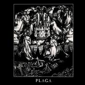 Plaga (demo)