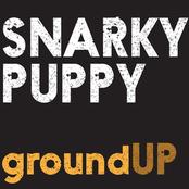 Snarky Puppy: GroundUP
