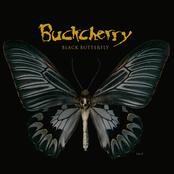 Buckcherry: Black Butterfly