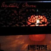 Perpetual Groove: Livelovedie