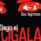 Diego El Cigala: Dos lágrimas