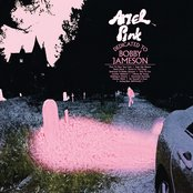 Another Weekend by Ariel Pink