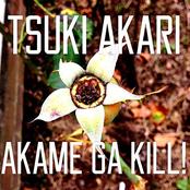 Tsuki Akari - Akame ga Kill! ED 2