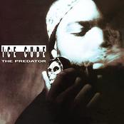 Ice Cube: The Predator