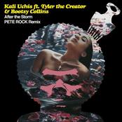 After The Storm (Pete Rock Remix)