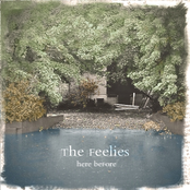 The Feelies: Here Before
