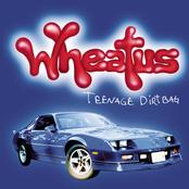 Wheatus: Teenage Dirtbag