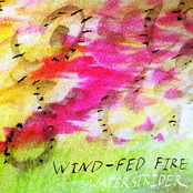 Wind-Fed Fire