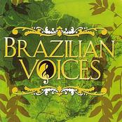 Brazilian Voices: Brazilian Voices