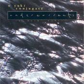 Undercurrents in Dark Water
