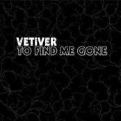 Vetiver: To Find Me Gone