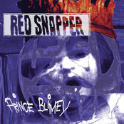 Red Snapper - Space Sickness