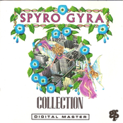 Spyro Gyra: Collection