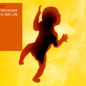 BT: Movement in Still Life