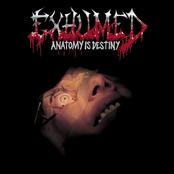 Exhumed: Anatomy Is Destiny