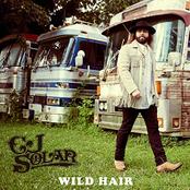 CJ Solar: Wild Hair
