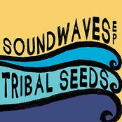 Tribal Seeds: SoundWaves EP