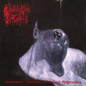 Pandemonic Ululations of Vesperic Palpitation