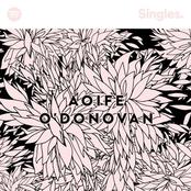 Aoife O'Donovan: Spotify Singles