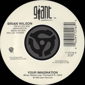 Your Imagination / Your Imagination [A Cappella] [Digital 45]