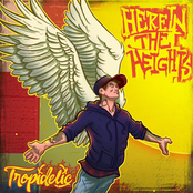 Tropidelic: Here in The Heights