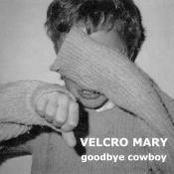 Goodbye Cowboy