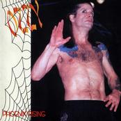 Phoenix Rising (disc 2)