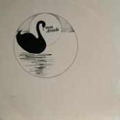 Swan Arcade