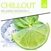 Chillout, Vol. 5