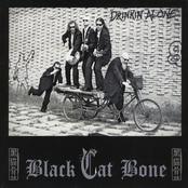 Black Cat Bone: Drinkin' Alone