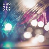 Ebonivory: Persist
