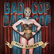 Bad Cop/Bad Cop: Not Sorry