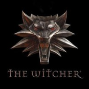 The Witcher - Inspired