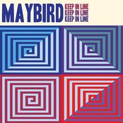 Maybird: Keep in Line