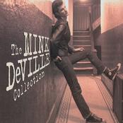 The Mink De Ville Collection