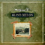 Blind Melon: The Best of Blind Melon