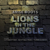 Arise Roots: Lions in the Jungle