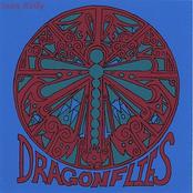 Sean Kelly: Dragonflies