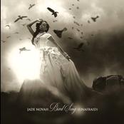 Jade Novah: Bird Song (Unafraid)