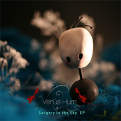 Surgery in the Sky EP