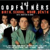 Birth, School, Work, Death: Hits, Rarities & Gems