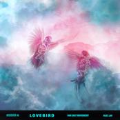 Lovebird (feat. Lay)