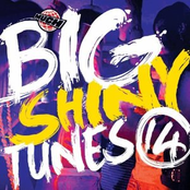Big Shiny Tunes 14