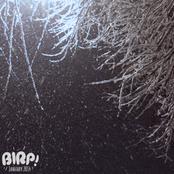 BIRP! January 2014