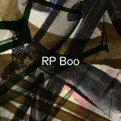 RP Boo - Established! Artwork