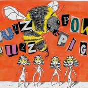 Album cover of Buzz Buzz, by Powpig