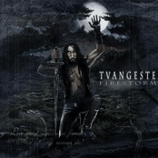 Tvangeste - Introduction