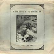 Vinternatt - EP